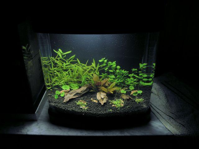 Haqos De Luxe Nano Akvarij