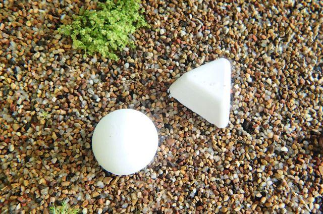 ShrimpNature stone and rock