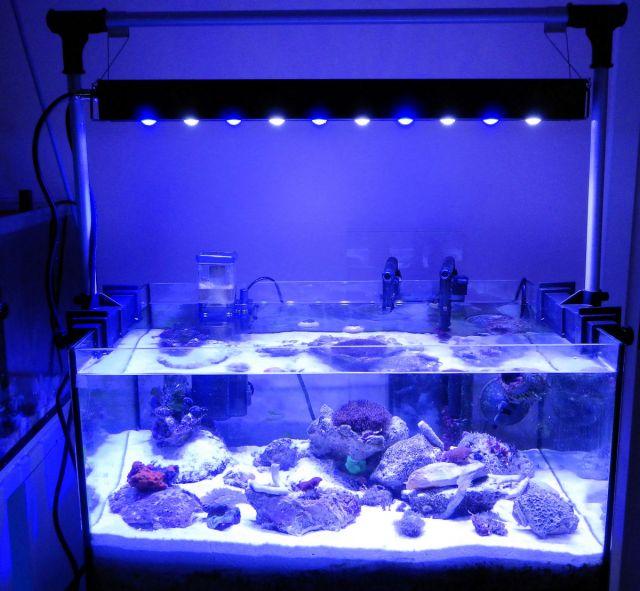 Nano morski sa led aquawasher 30 w i ns 12 mini skimmer